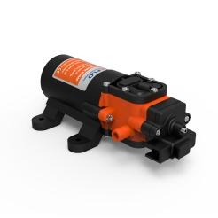 Seaflo pump