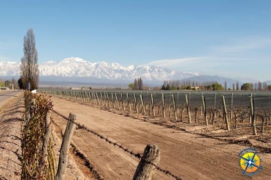On the way to Tupungato, Mendoza.